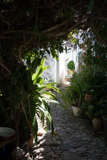 Visita Castellar Viejo y descubre todo lo que puedes hacer allí