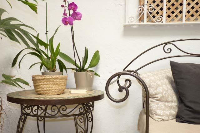 Apartamentos con encanto en una casa señorial, protegida y típica jerezana. Situado en el casco antiguo de Jerez, Casa Rosaleda tiene un precioso patio ajardinado y, además, un acogedor jardín para disfrutar al aire libre en un ambiente histórico y tradicional andaluz.