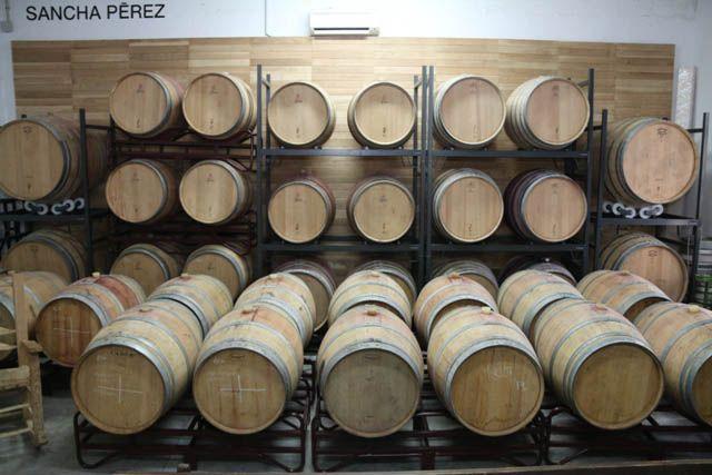 Te contamos cómo se produce la vendimia de la Tintilla de Rota en Bodega Sancha Pérez