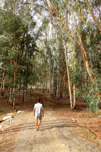 Te contamos cómo es la experiencia de practicar puenting en la sierra de Cádiz con Discovery.