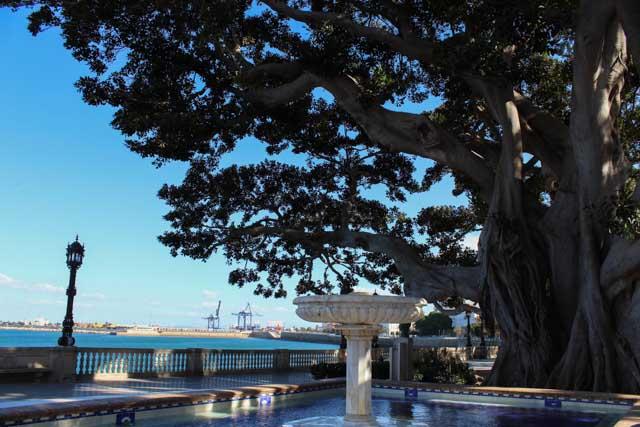 Descubre la historia de Cádiz a través de 4+1 rutas que no te dejarán indiferente.