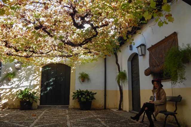 Te proponemos visitar las Bodegas Fundador para vivir una experiencia inigualable en Jerez de la Frontera.