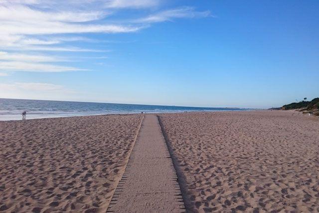 La Playa de Roche, en Conil de la Frontera, tiene un a extensión de algo más de 2 kms. y está situada frente a la urbanización del mismo nombre, entre la Cala Encendida y la Playa de la Torre del Puerco.