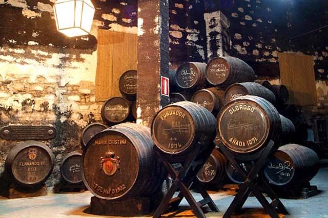Acude a una cata de vinos y descubre todos los detalles sobre este tesoro líquido.