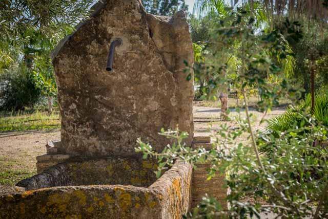 Medina Sidonia, un municipio gaditano que merece la pena descubrir.