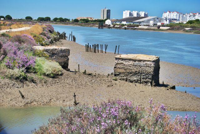 El Parque Natural de la Bahía de Cádiz es una auténtica joya de la naturaleza que no deja indiferente a nadie.
