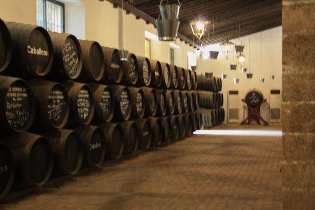 En el Castillo de San Marcos se encuentran las Bodegas Caballero.