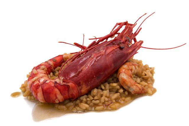 El Restaurante La Torre es tu sitio si te apetece un delicioso arroz con carabineros a tu paso por La Janda.