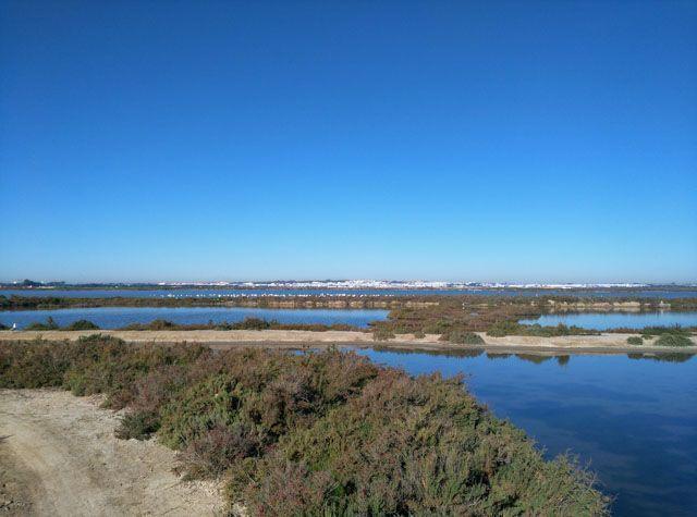 Te damos un sinfín de razones para conocer El Puerto de Santa María, una de las ciudades más completas de la provincia de Cádiz.