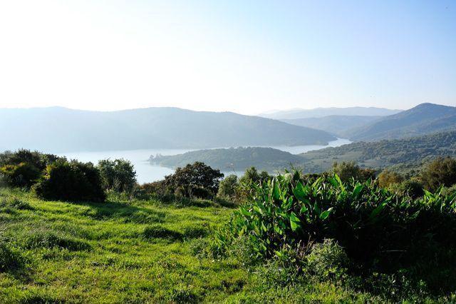 No puedes dejar de disfrutar durante tu fin de semana de las zonas verdes de la provincia, como el impresionante Parque Natural de Los Alcornocales.