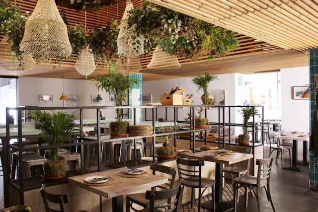 Cádiz es una provincia con una amplísima oferta de restauración de alta calidad, como el Restaurante El Puerto Escondido, en El Puerto de Santa María.