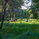 Parque la Toya en Trebujena.