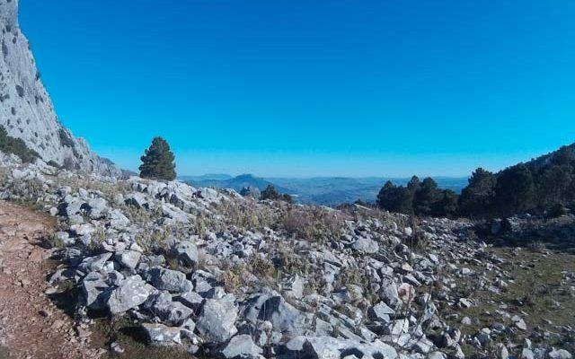 Ruta El Torreón – Grazalema