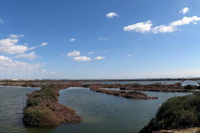 isla del trocadero Puerto Real
