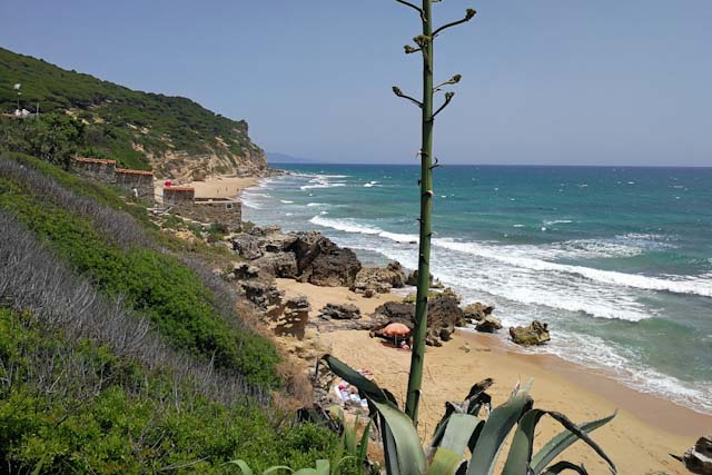 You'll absolutely love Barbate beaches!