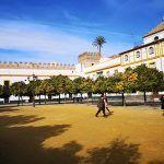 Giralda Patio de Banderas Sevilla