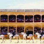 evento plaza de toros ronda